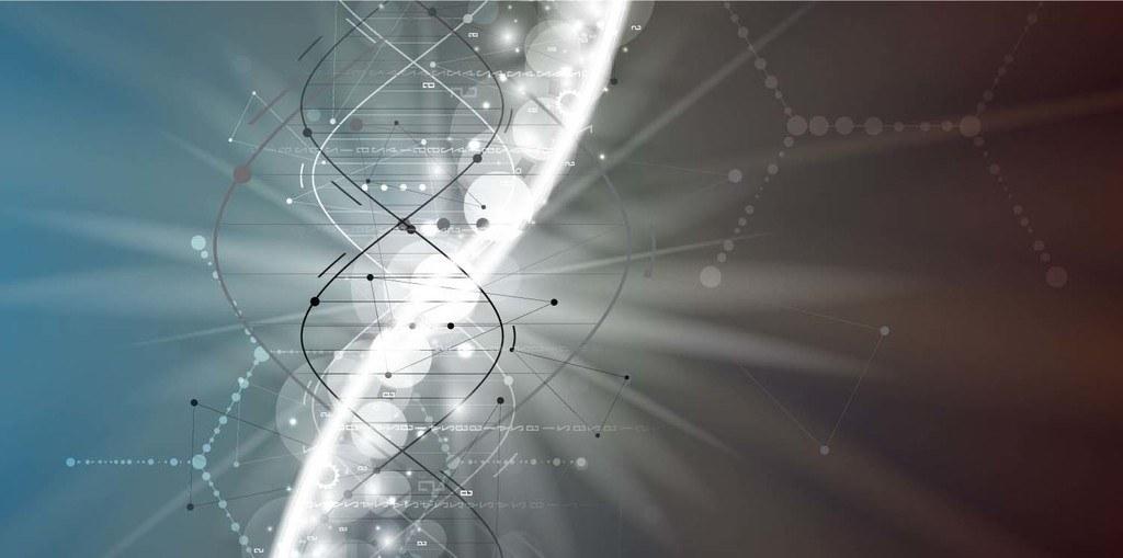 Image result for Get tested for MTHFR gene mutation